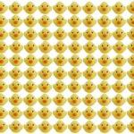 【夢のアヒル風呂】あのひよこがまとめて100匹売ってた!